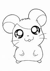 Hamtaro Coloring Pages Tv sketch template