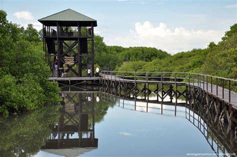 Meski kita memiliki potensi yang luar biasa sebagai tempat tujuan wisata ekologi (ekowisata), tetapi tidak otomatis dapat berkembang dengan. Kasus hutan mangrove Bali | KASKUS