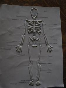 Almost Unschoolers  Skeletal System Sewing Cards
