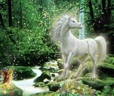 unicorns images unicorn wallpaper and background photos