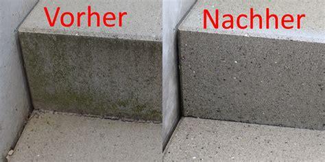 Gr 252 Nschleier Auf Stein Und Beton Entfernen 5 Einfache