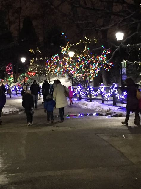 brookfield zoo lights 2017 zoo lights chicago 2016 brookfield best zoo 2017