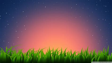grass illustration  hd desktop wallpaper   ultra hd