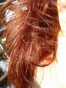 Prijzen Hair in the city