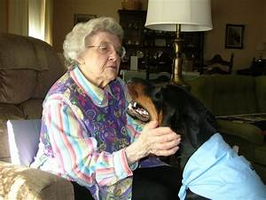 would my dog be a good therapy dog caregiver canines With dog caregiver