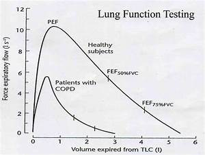 2013 Cpt Code For Pulmonary Function Test