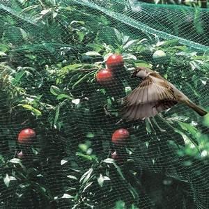 Filet Pour Arbre Fruitier : filet oiseaux 5x10m gamm vert plantes et jardins ~ Melissatoandfro.com Idées de Décoration