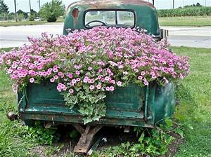with truck gardening ideas landscaping and gardening design With markise balkon mit tapete blumen retro
