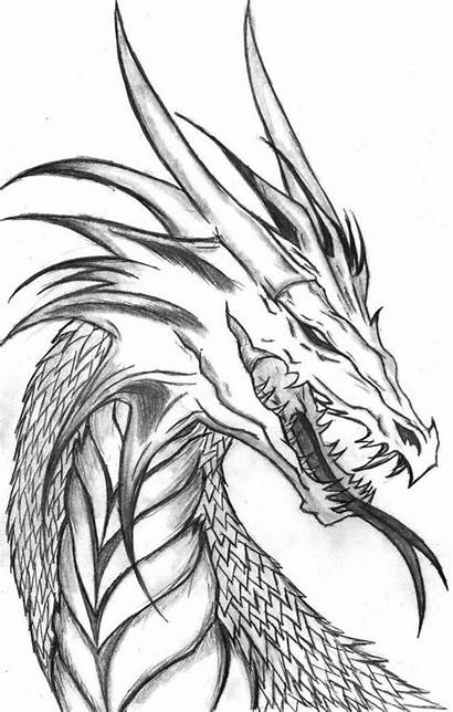 Dragon Drawing Coloring Pages Printable Drawings Cool