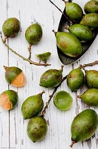 A_A_Fruit,Vegetables,Herbs &Spices on Pinterest | Tropical ...