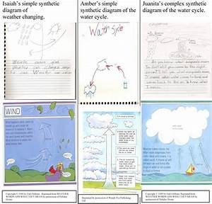 Examples Of Children U0026 39 S Synthetic Diagrams Compared With