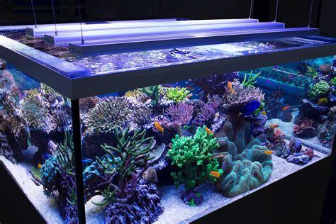 fish tank lights led aquarium light fixture led