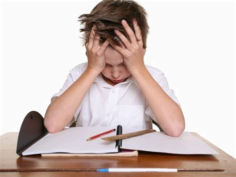 The berenstain bears and the homework hassle phd thesis writing help persuasive writing homework ks1 aussie essay writer review