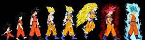 Goku's Evolution - Complete by DFJonesArt on DeviantArt