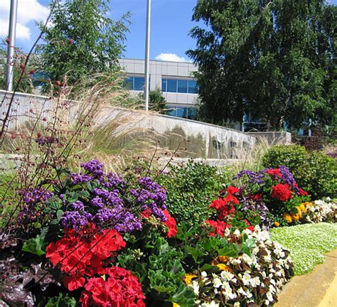 Commercial Landscaping Curb Appeal  Signature Landscaping