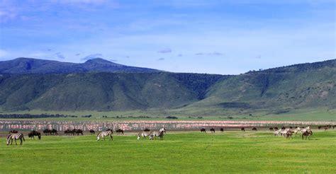 ngorongoro crater african safaris natural habitat