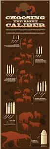 Ammunition Comparison Chart Use This Rifle Caliber Chart To Pick The Right Ammo For