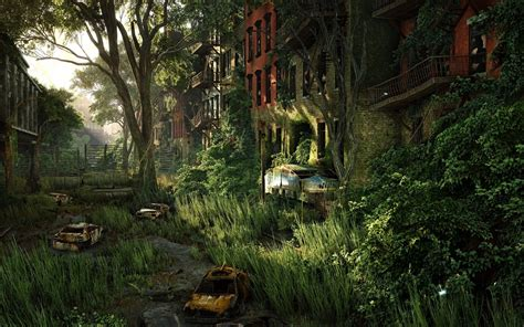 forest nature overgrown crysis  wallpapers hd