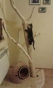diy cat tree diy cat tree cat