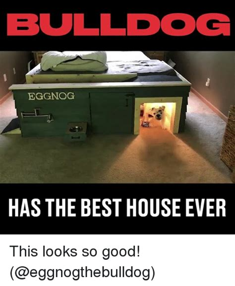 Funniest Meme Pictures Ever - bulldog eggnog has the best house ever this looks so good meme on sizzle