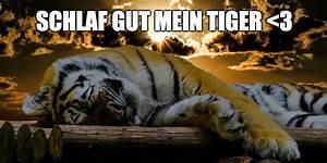 Bilder Schlaf Gut : gute nacht sms spr che und bilder f r whatsapp schlaf gut ~ Orissabook.com Haus und Dekorationen