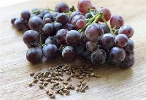 Grape Seed Extract Tops Chemo The Killing These Dangerous Cancer Cells  That U0026 39 S Why