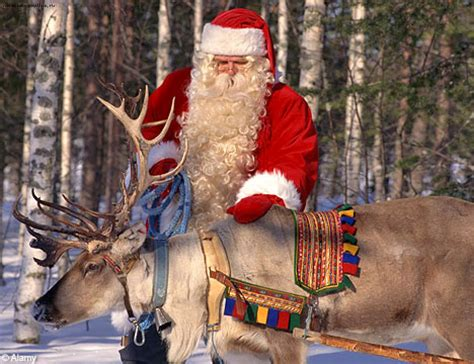 santa reindeer santa reindeer sleigh santa reindeer