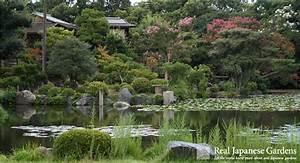 Shosei En Garden Kyoto Sakura