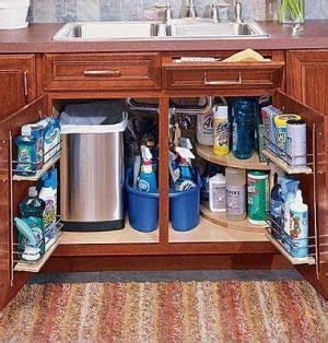 The Kitchen Sink Storage Ideas by Sink Storage Home Design Ideas Apartment Kitchen