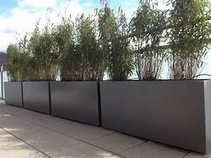 Jardiniere Pas Chere : grande jardiniere rectangulaire plastique pas cher maison retraite champfleuri ~ Melissatoandfro.com Idées de Décoration