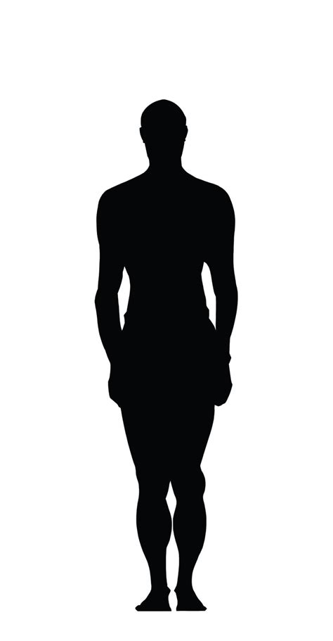 Human Clipart Human Clipart Human Silhouette Pencil And In Color Human