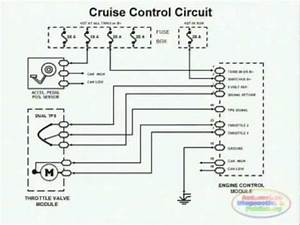 Cruise Control  U0026 Wiring Diagram