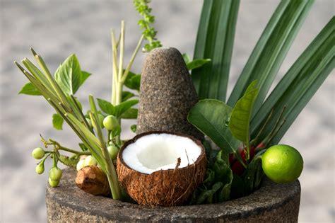 coco cuisine maldives cuisine cornus coco collection
