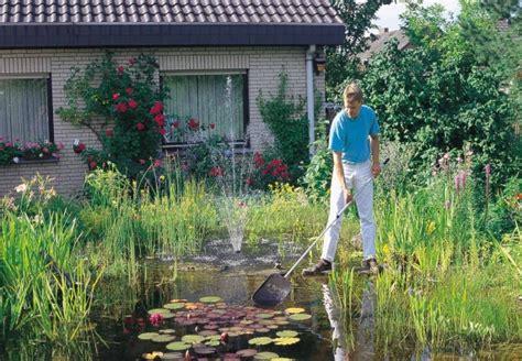 Für Klare Verhältnisse Im Gartenteich Die Besten Tipps