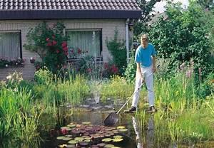 Algen Im Gartenteich : f r klare verh ltnisse im gartenteich die besten tipps ~ Michelbontemps.com Haus und Dekorationen