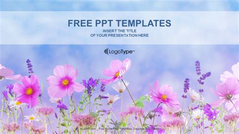 flower field nature powerpoint templates