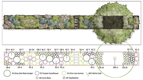 plant by numbers garden design urban biodiversity in your yard