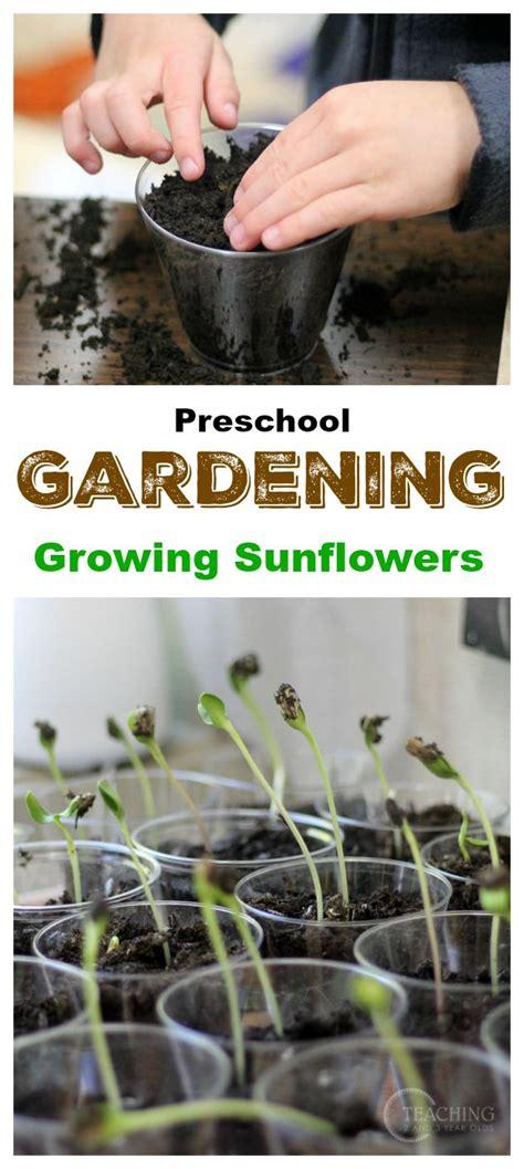 228 best images about gardening ideas on 552 | f2ddff5b8c60162b1ba432a3c2305ec7