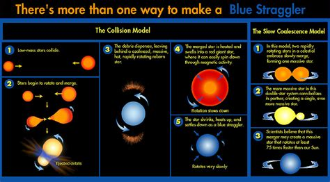 what are stars formed from blue stragglers in globular clusters