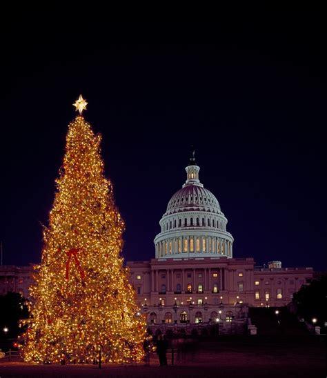 washington dc christmas lights free photo christmas tree capitol building free image