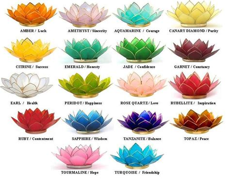 Lotus Flower Meaning Color