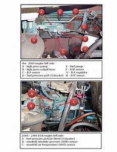 2006 International Dt466 Engine Diagram  Engine  Wiring