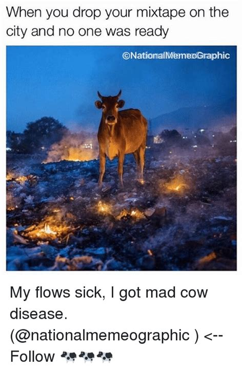 Mad Cow Disease Meme - 25 best memes about mad cow mad cow memes