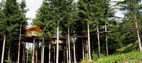 maison en bois dans les arbres construire une cabane dans les arbres mag maison