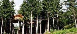 Cabane Dans Les Arbres Construction : construire une cabane dans les arbres mag maison ~ Mglfilm.com Idées de Décoration