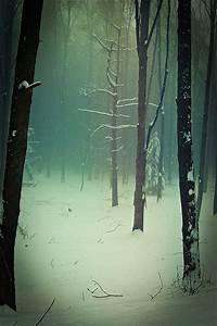 Source: whimsical-nostalgia, via funerealwaif   Snow ...