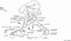 Nissan Sentra Hose Vacuum Control  Engine