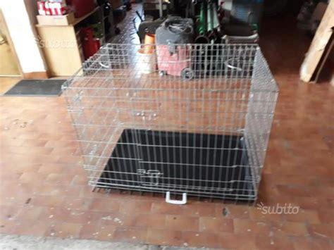 Cani In Gabbia - gabbia cani posot class