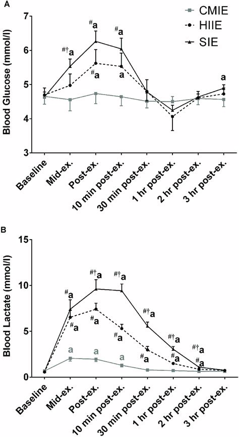 blood lactate  blood glucose    exercise