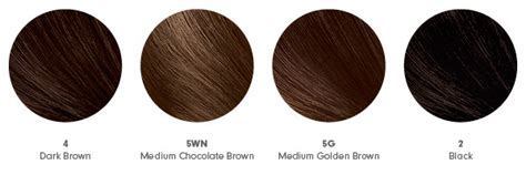 The Right Shade Of Black Hair by At Home Hair Color How To Get The Shade Right Beautylish